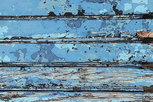 Salty Oak 1 by Russell Owens