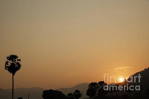 Saluting the Sun by Kiran Joshi