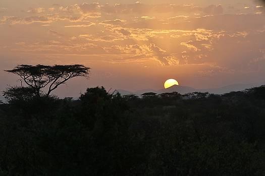 Samburu Sunrise by Ann Sullivan