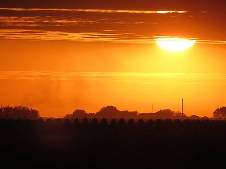 Kyle West - Samhain Harvest