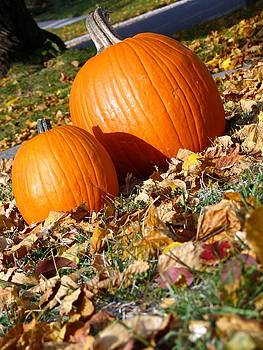Kyle West - Samhain Pumpkin III