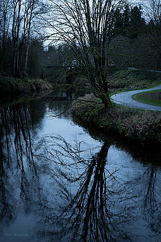 Tim Newton - Sammamish River at Dusk