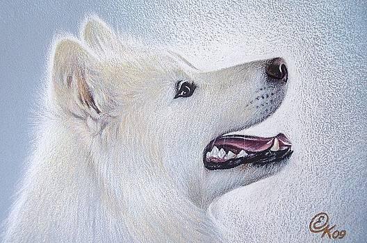 Samoyed by Elena Kolotusha