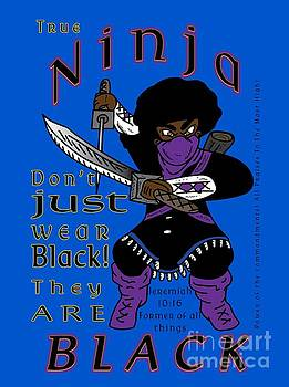 True Ninja by Robert Watson