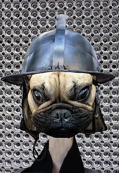 Samurai dog by Ivanoel Art