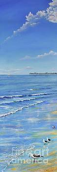 San Clemente Beach by Mary Scott