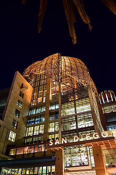 Robert VanDerWal - San Diego City Library at Night