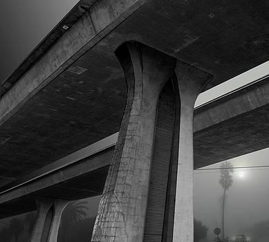 San Diego Frewway by Larry Butterworth