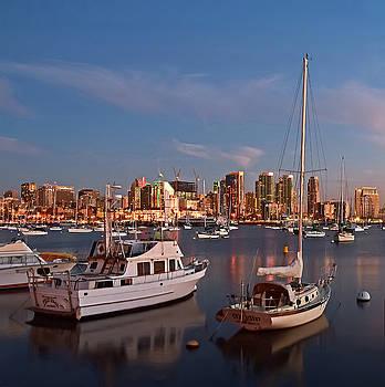 Robert VanDerWal - San Diego Harbor Squared