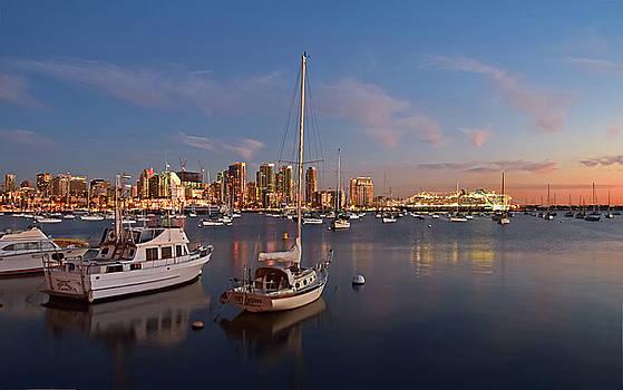 Robert VanDerWal - San Diego North Harbor At Twilight