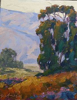 San Diego Valley by Kevin Yuen