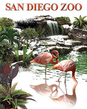 San Diego Zoo by Harold Shull