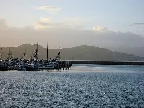 San Francisco Bay  by Otis L Stanley