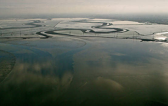 San Francisco Bay Salt Flats 2 by Sylvan Adams