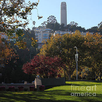 Wingsdomain Art and Photography - San Francisco Coit Tower At Levis Plaza 5D26217 square