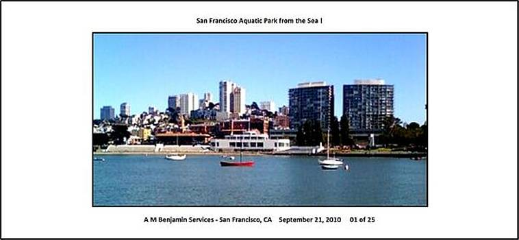 San Francisco from the Bay  by Anthony Benjamin