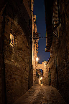 San Gimignano Alley by Niall Whelan