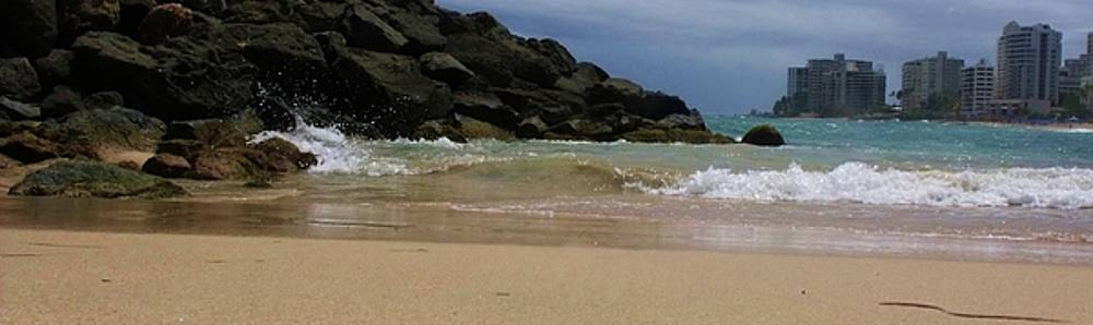 San Juan Beach 7 by Anna Villarreal Garbis