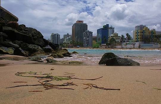 San Juan Beach IV by Anna Villarreal Garbis