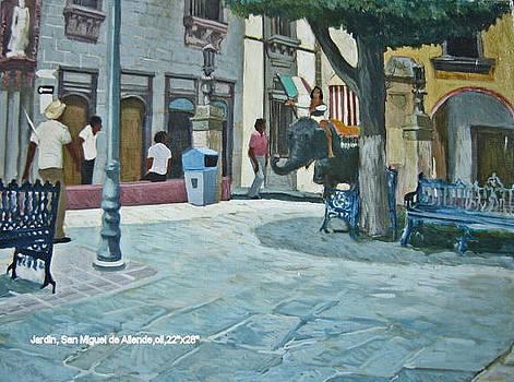 San Miguel de Allende by Jim Innes