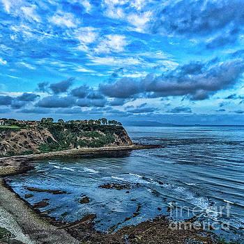 Julian Starks - San Pedro Coastline #3
