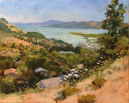 San Rafael Bay from Via La Cumbre, Greenbrae, CA by Peter Salwen