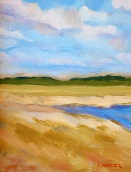 Sand and Sky by Colleen Kidder