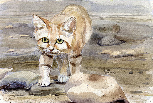Sand Cat - Felis Margarita by Mimi Boothby