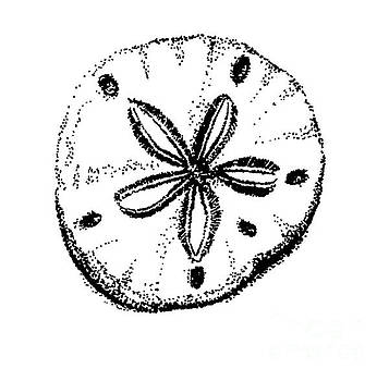 Sand Dollar by Shelley Myers