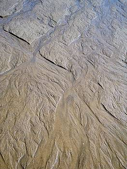 Cathy MONNIER - Sand patterns