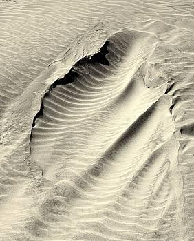 Sand Drift by Rosanne Jordan