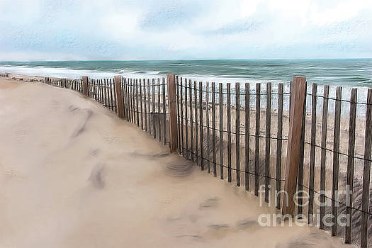 Dan Carmichael - Sand Dune Fence on Outer Banks AP