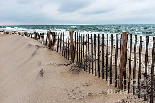 Dan Carmichael - Sand Dune Fence on Outer Banks