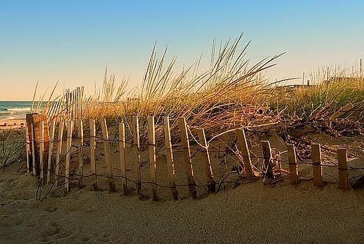 Sand Dune in Late September - Jersey Shore by Angie Tirado
