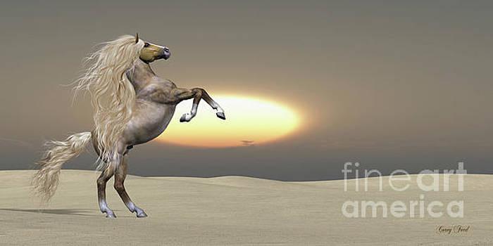 Corey Ford - Sand Dune Palomino Horse