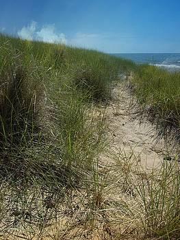 Sand Dune by Sue Midlock