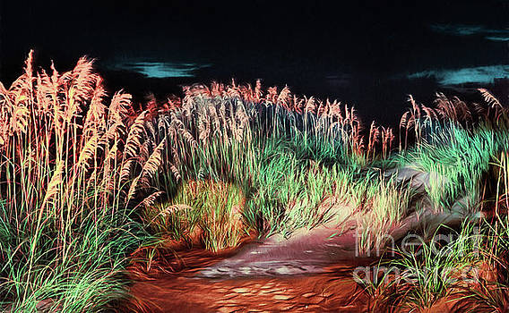 Dan Carmichael - Sand Dunes at Night on the Outer Banks AP