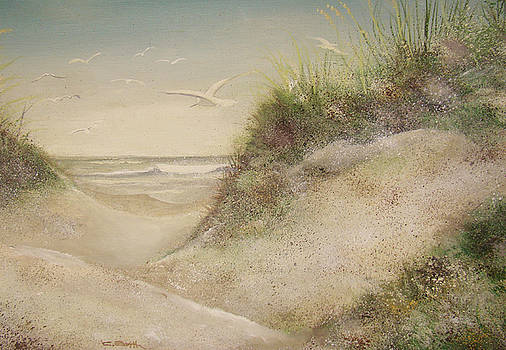 Sand Dunes by Charles Roy Smith