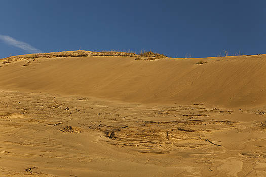 Sand dunes by Mike Santis