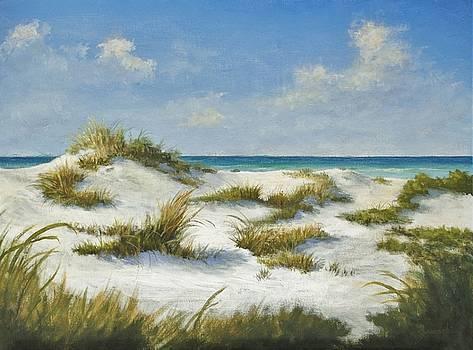 Sand Dunes Morning by Alan Zawacki by Alan Zawacki