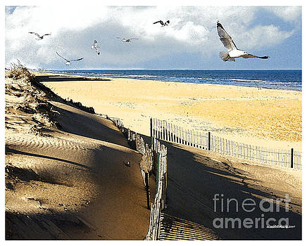Sand Dunes on the Beach by Margie Middleton