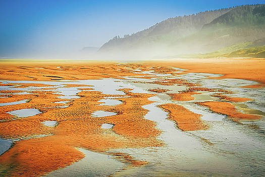 Sand Patterns No1 by Bonnie Bruno