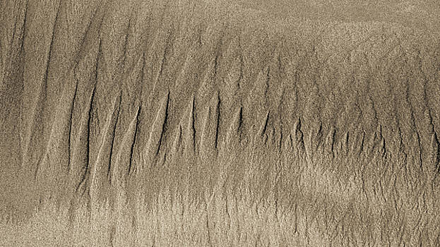 Steven Ralser - Sand Patterns on the Beach 3