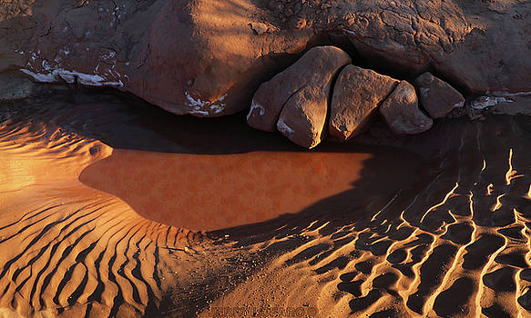 Sand Puddle by Jerry LoFaro