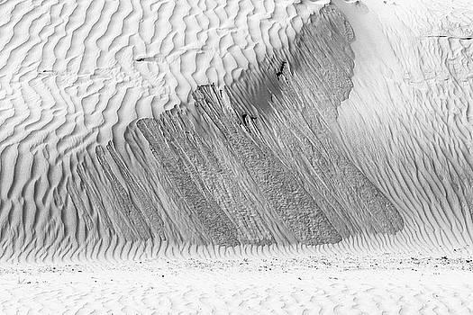 Sand ripples by Hitendra SINKAR
