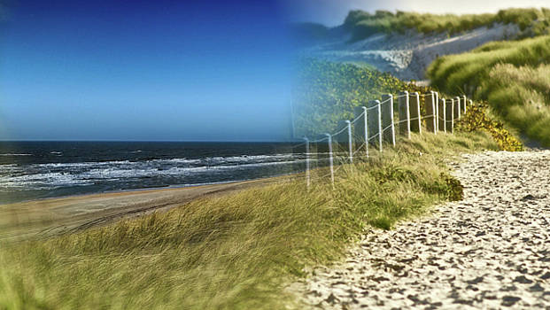 Sand Track To The Ocean Montage by Clive Littin