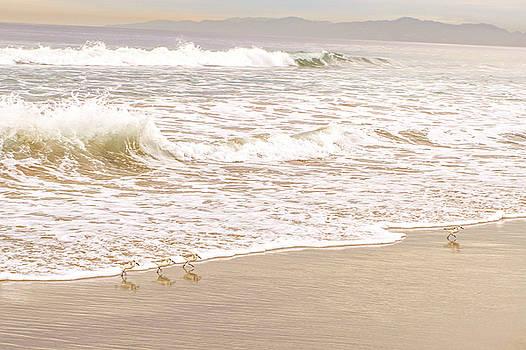 Sandelings in Hermosa by Michael Hope