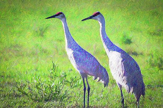 Sandhill Crane Couple by Richard Goldman