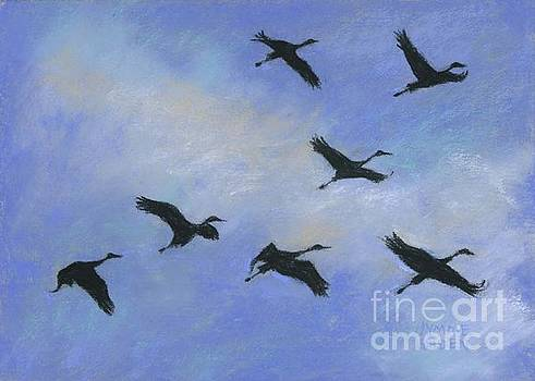 Sandhill Cranes Overhead by Jymme Golden