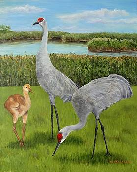 Sandhill Pair with Youngster by Leda Rabenold